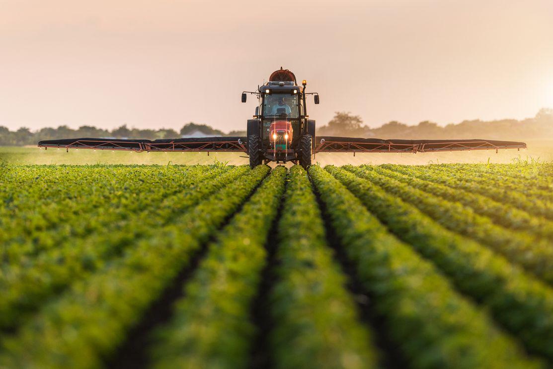 Agricultores ultraperiféricos pedem a Bruxelas que não se corte no POSEI
